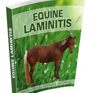 laminitis-ebook-cover